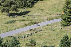 Enjoy-Mortirolo-8519
